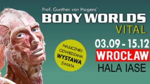 BODY WORLDS VITAL – Wrocław